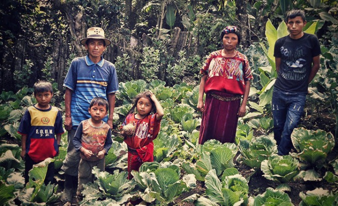 Philanthropy Partners Giving Back: donors contributed to the purchase of seeds from Philanthropy Partner Seed Programs International.  The Guatemalan non-profit Association ASO-Ixil provided training, tools and fertilizer for this family garden in Chajul. Guatemala.