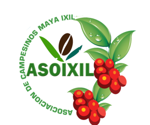 Click here for the ASO-Ixil website