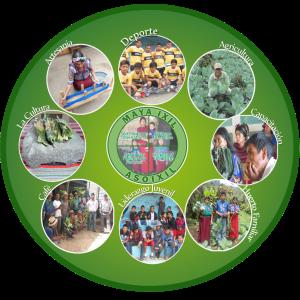 ASO-Ixil Farmers Association, Chajul, Guatemala